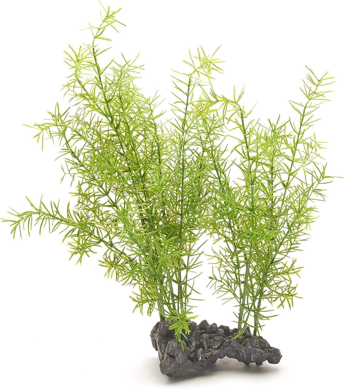 pianta da acquario 35/cm di altezza bella e realistica Pistachio Pet con base