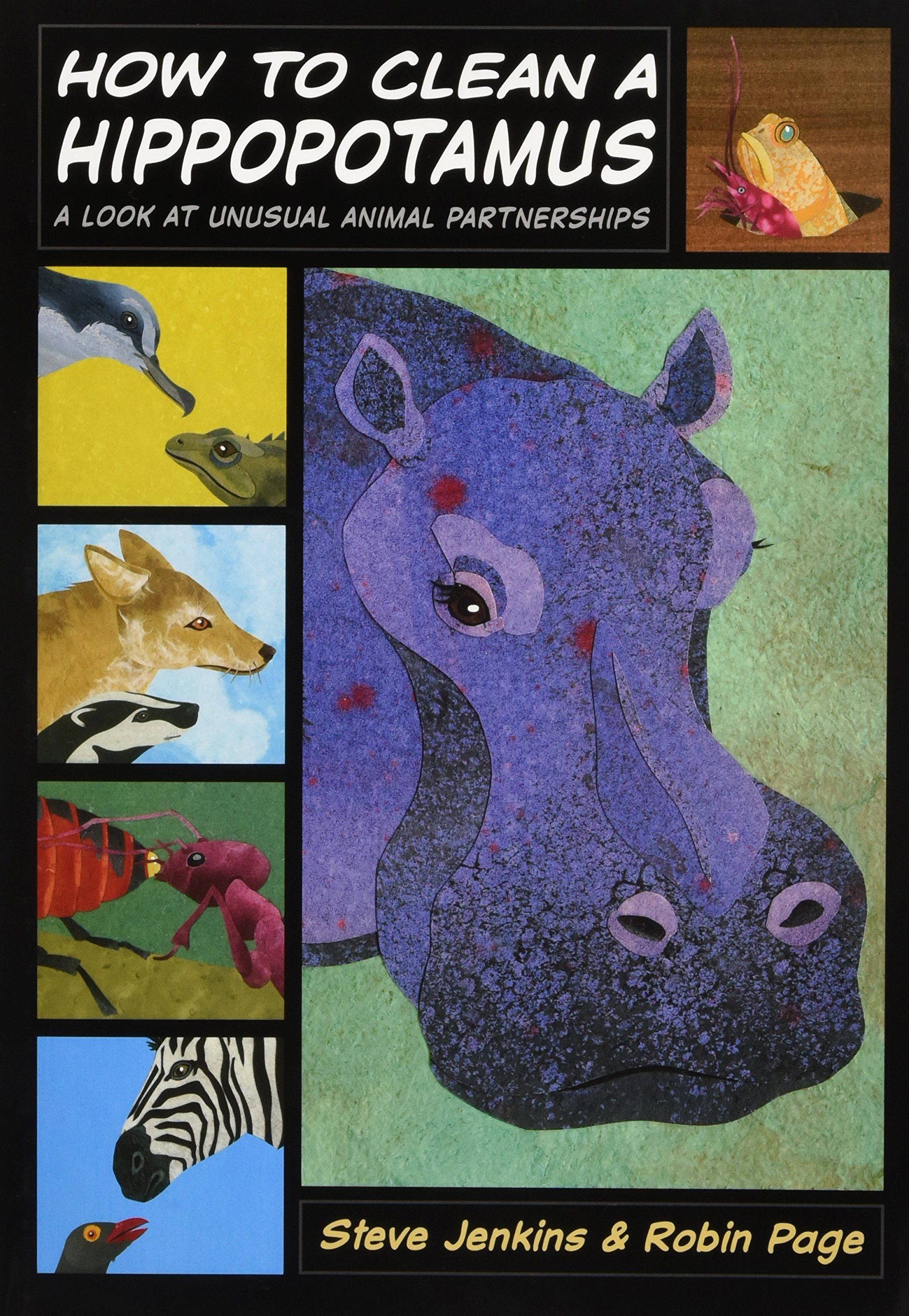 How to Clean a Hippopotamus: A Look at Unusual Animal Partnerships ebook