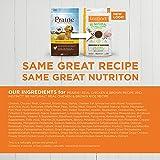 Prairie Real Chicken & Brown Rice Recipe Natural