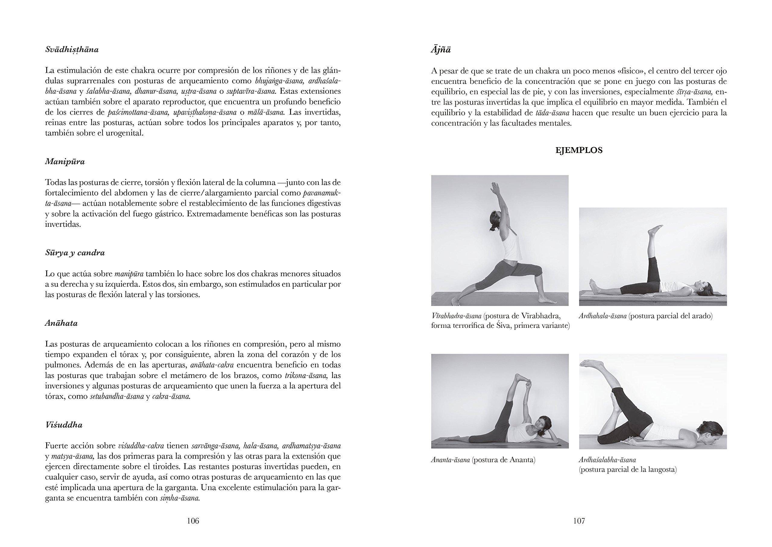 Manual De Hatha. Yoga: Teoría y práctica para profesores ...