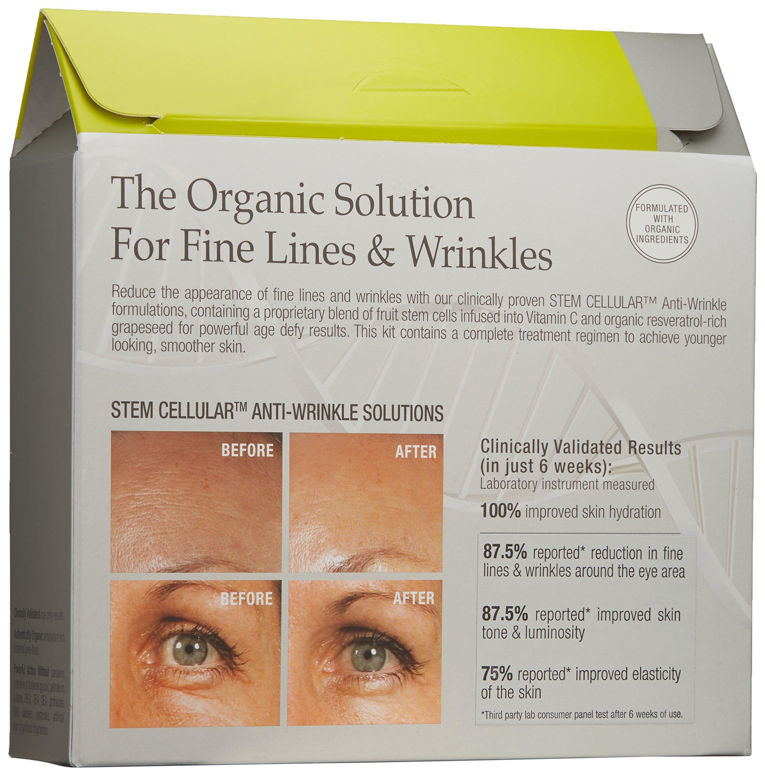Juice Beauty Stem Cellular Anti-Wrinkle Solutions Kit by Juice Beauty (Image #2)