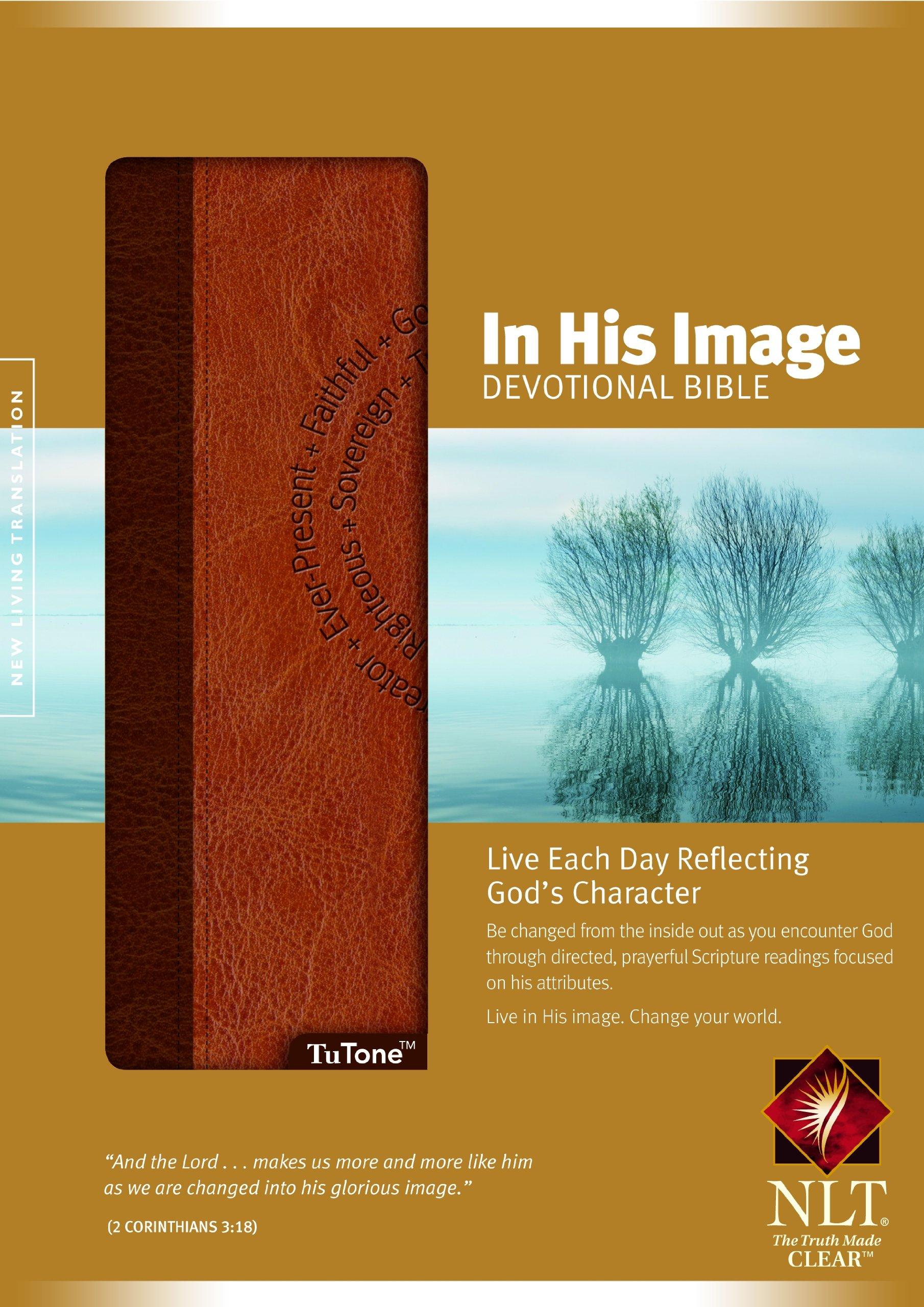 New Living Translation Bible Epub