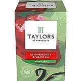 Taylors & Royal Botanic Gardens Kew Green Tea with Strawberry & Vanilla 20 Tea Bags (Pack of 3, 60 bags in total)