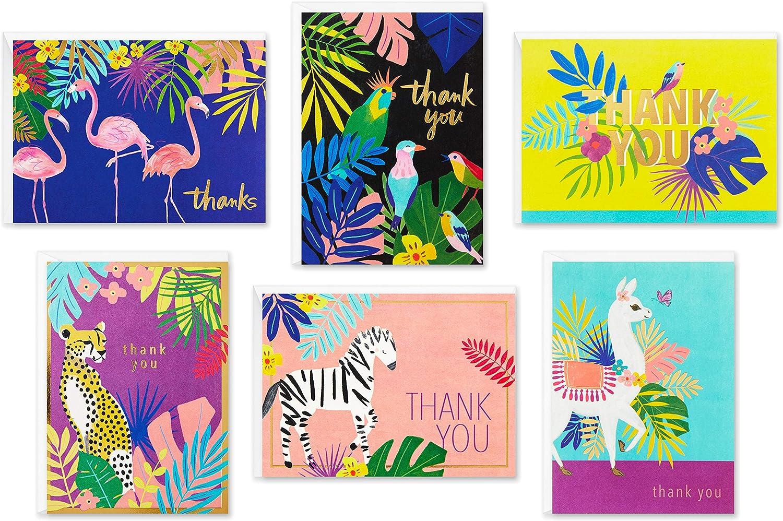 Hallmark Thank You Cards Assortment, Tropical Animals (24 Assorted Thank You Notes with Envelopes—Cheetahs, Llamas, Zebras, Flamingos, Birds), global animals (5STZ1045)
