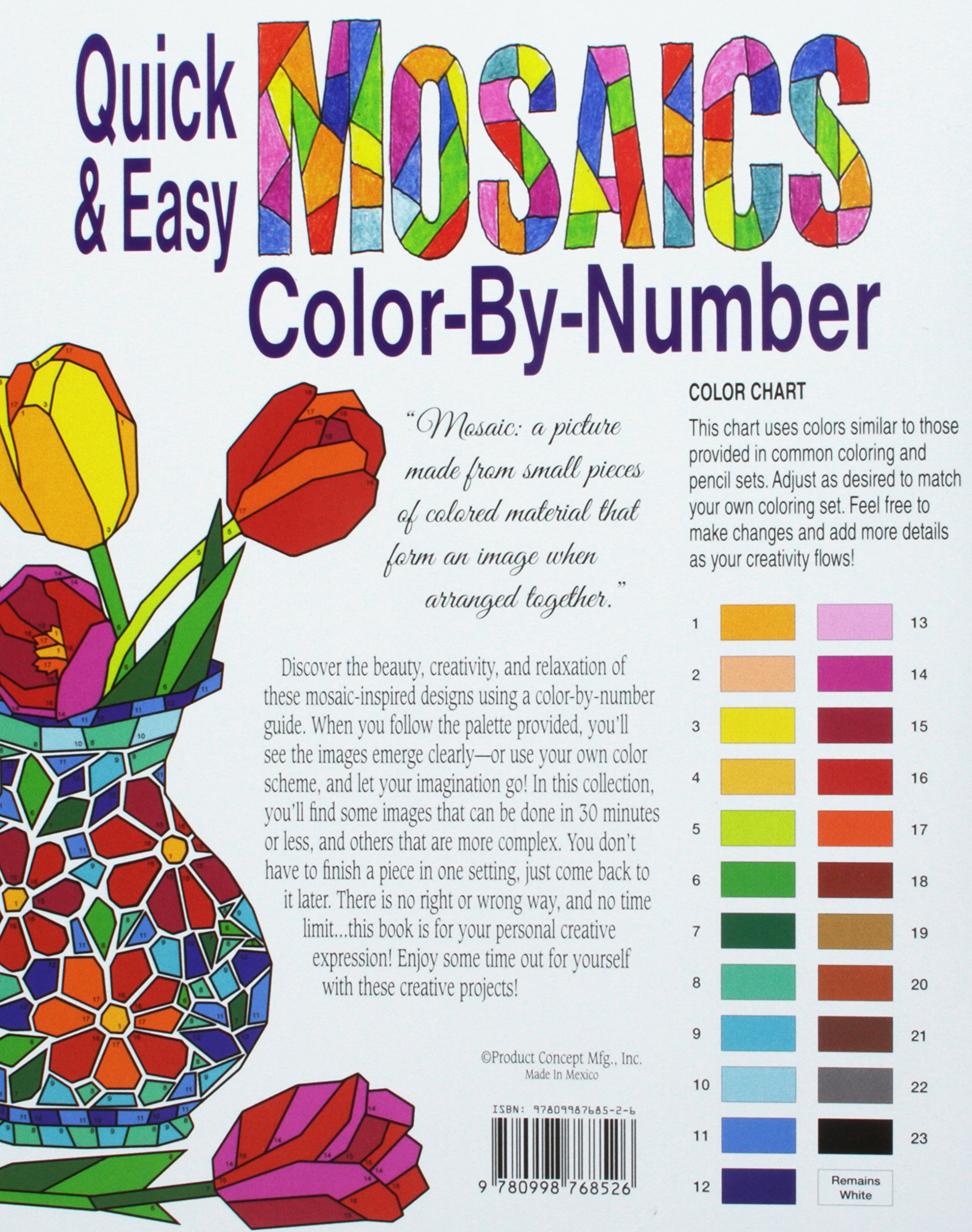 Amazon.com: Quick & Easy Mosaics Color-by-Number (9780998768526 ...