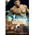Mr. Jaguar (contemporary M/M cinderfella romance)