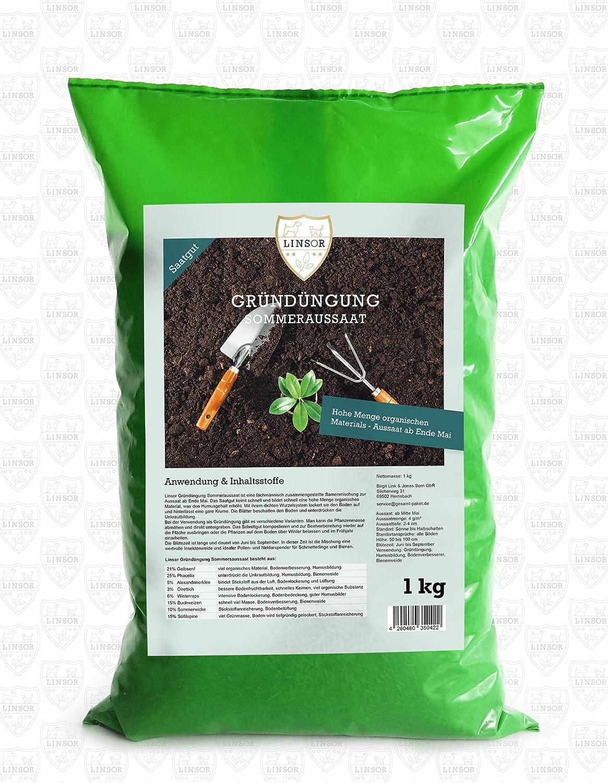 1kg hochwertiges Saatgut f/ür den Garten Linsor Gr/ünd/üngung Sommeraussaat fachm/ännisch zusammengestellte Samenmischung