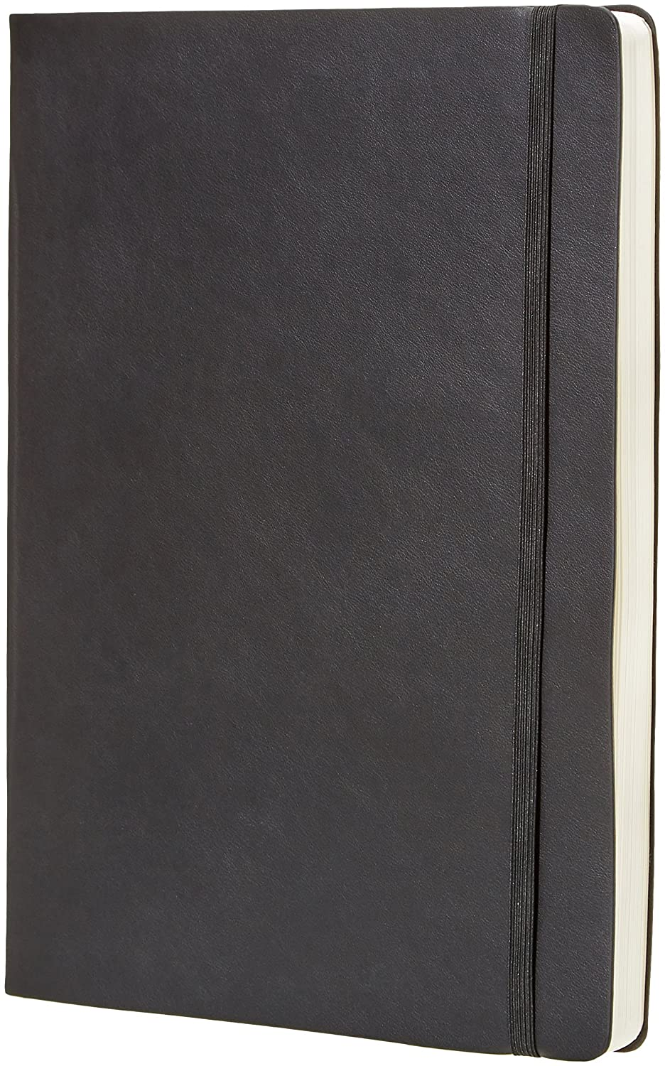 "AmazonBasics Daily Planner and Journal - 8.5"" x 11"", Soft Cover"