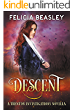 Descent (Trenton Investigations Book 2)