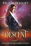 Descent (Trenton Investigations)