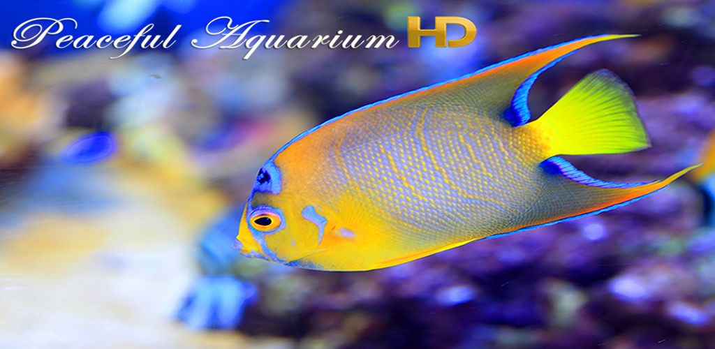 Amazon Com Beach Hd Wallpapers Appstore For Android: Amazon.com: Peaceful Aquarium HD: Appstore For Android