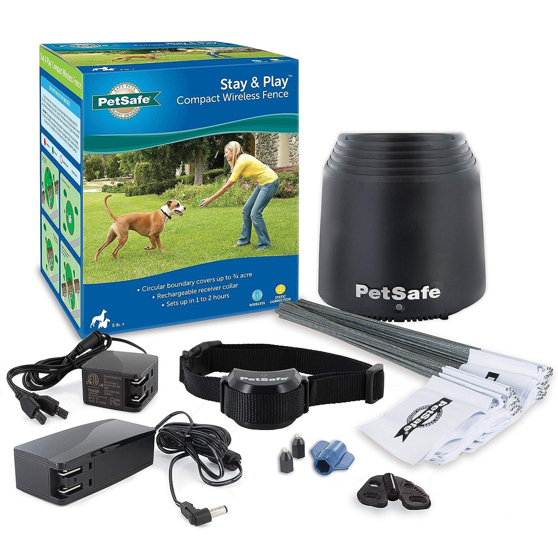 PetSafe Stay+Play Wireless Fence