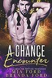 A Chance Encounter : A Billionaire Office Romance
