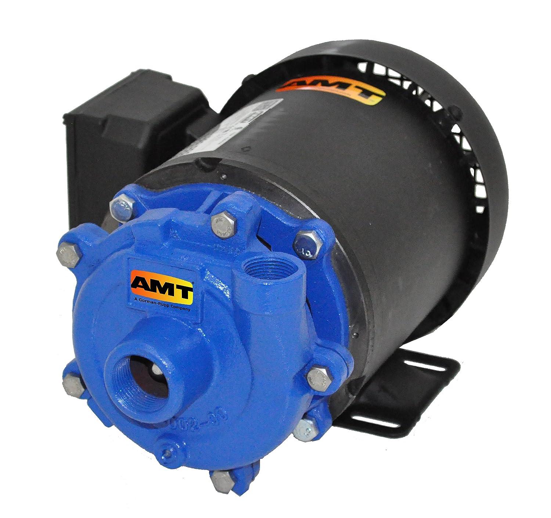 "AMT Pump 368A-95 Straight Centrifugal Pump, Cast Iron, 1/3 HP, 1 Phase, 115/230V, Curve A, 3/4"" NPT Female Suction, 1/2"" NPT Female Discharge Port"