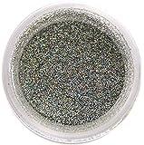 Silver Hologram Disco Glitter Dust, 5 gram container