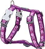 Red Dingo Desinger Dog Harness, Breezy Love Purple (12mm x Neck: 25-39cm / Body 30-44cm) XS
