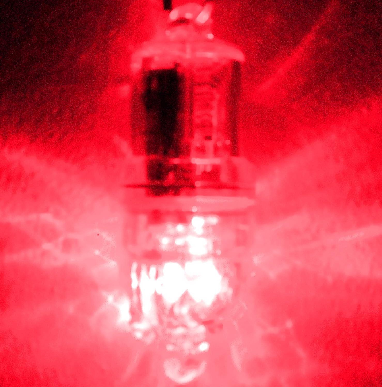 Amazon.com : Deep Drop Fishing LED Lights Purple, 2100 Ft Resistance ...