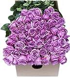 Farm2Door Wholesale Roses: 25 Fresh Purple Roses (Long Stemmed - 50cm) - Farm Direct Wholesale Fresh Flowers