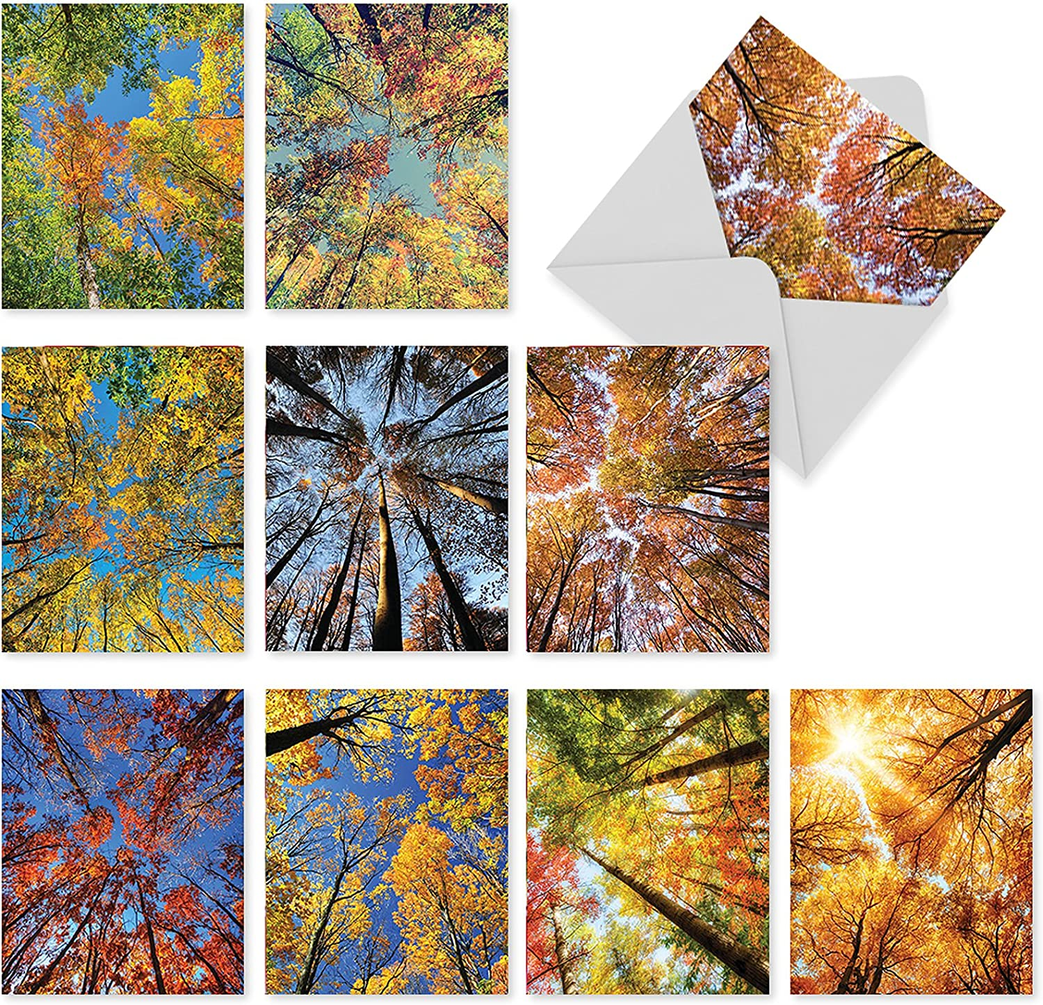 Autumn Treetops - 10 Assorted All Occasion Greeting Cards with Envelopes (4 x 5.12 Inch) - Beautiful Tree Leaves, Inspirational Nature Notecards M2006
