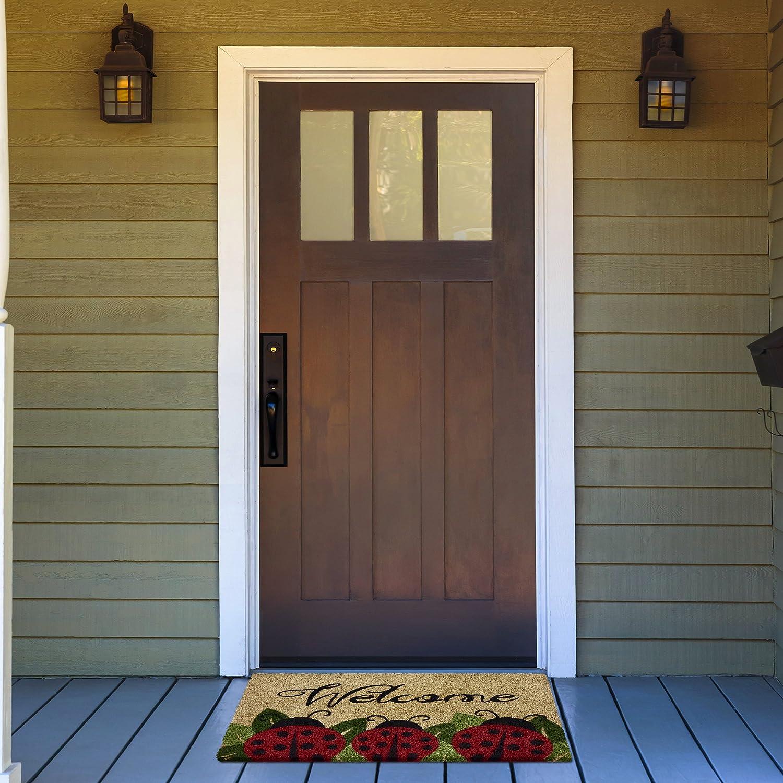 Achim Home Furnishings PCM1830LB6 Ladybug Printed Coir Door Mat 18 x 30