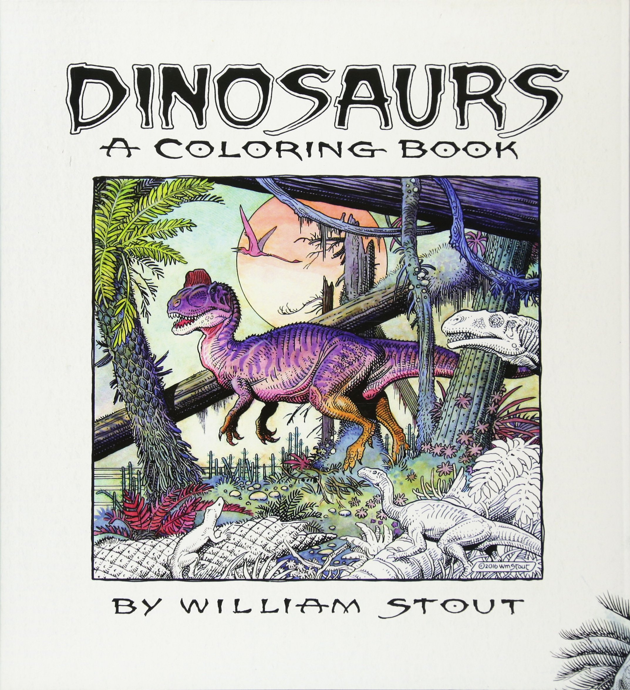 Dinosaurs A Coloring Book By William Stout 9781608878642 Amazon Books