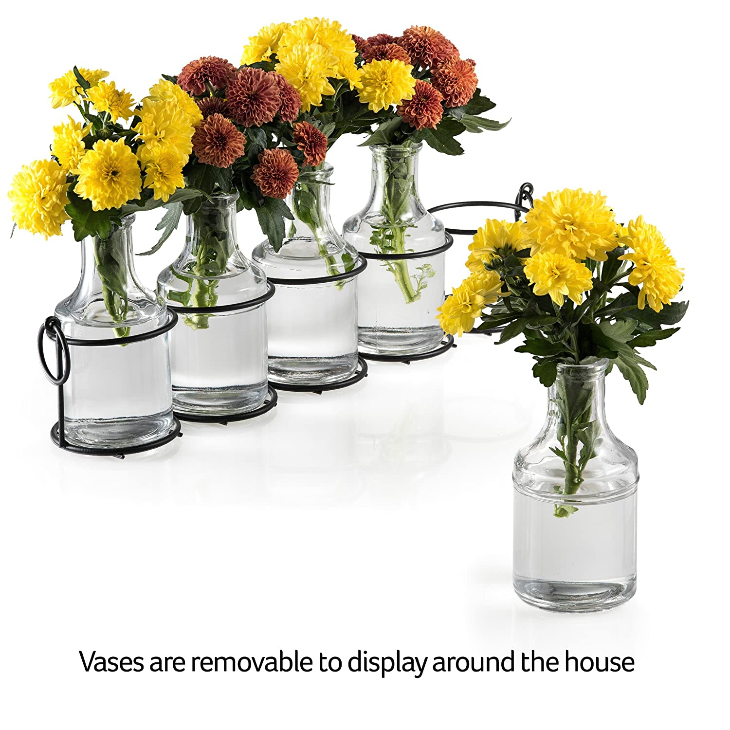 Amazon small bud glass vases in black metal rack stand amazon small bud glass vases in black metal rack stand window sill display set of 5 crystal clear flower vase decorative centerpiece for home or reviewsmspy
