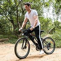 Speedrid 250W 36V 8Ah Electric Mountain Bike with Suspension