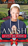 Amish Love Be True (Peace Valley Amish Series Book 6) (English Edition)