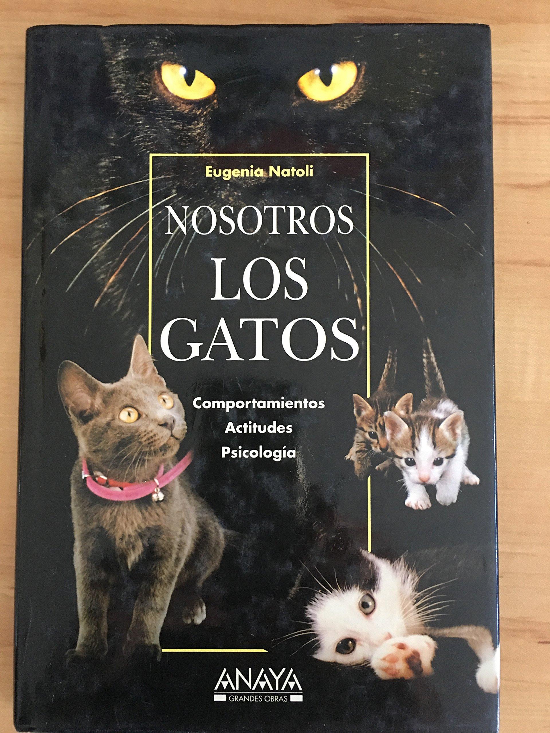 Nosotros los gatos (Spanish) Paperback