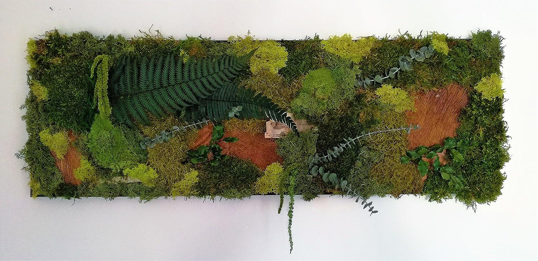 tableau végétal nature