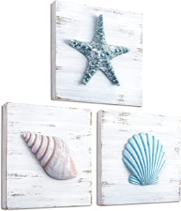 TideAndTales Beach Theme Seashell Wall Decor (Set of 3) | Shells and Starfish Beach Decor for Bathroom, Bedroom or Living Room | Rustic Coastal Decor | Beach Decorations for Home | Beach Wall Art