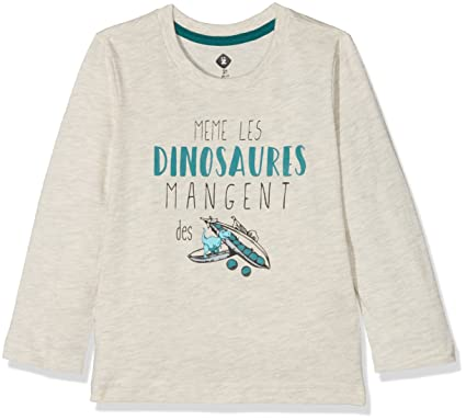 Z Dinosaures Gris Clair, T-Shirt Garçon: Amazon.fr: Vêtements et ...