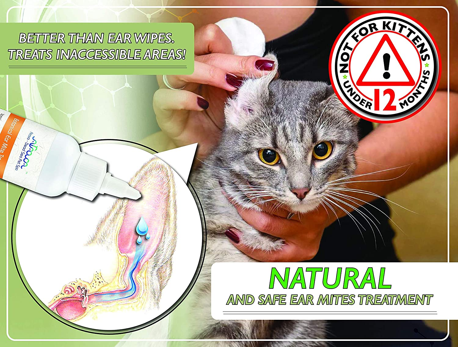 Arava Natural Ear Mite Treatment - for Dogs & Cats - Pet Ear Mites Infection Cleaner - Treat Inaccessible Areas & Prevent Infections - Healthy Safe Formula with Botanical Extracts & Dead Sea Minerals