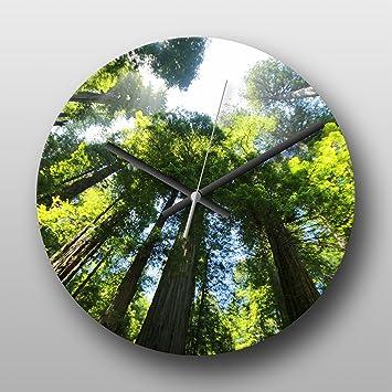 Reloj de pared Sequoia Redwood Bosque de árbol de color grande de cuarzo circular Impreso Reloj