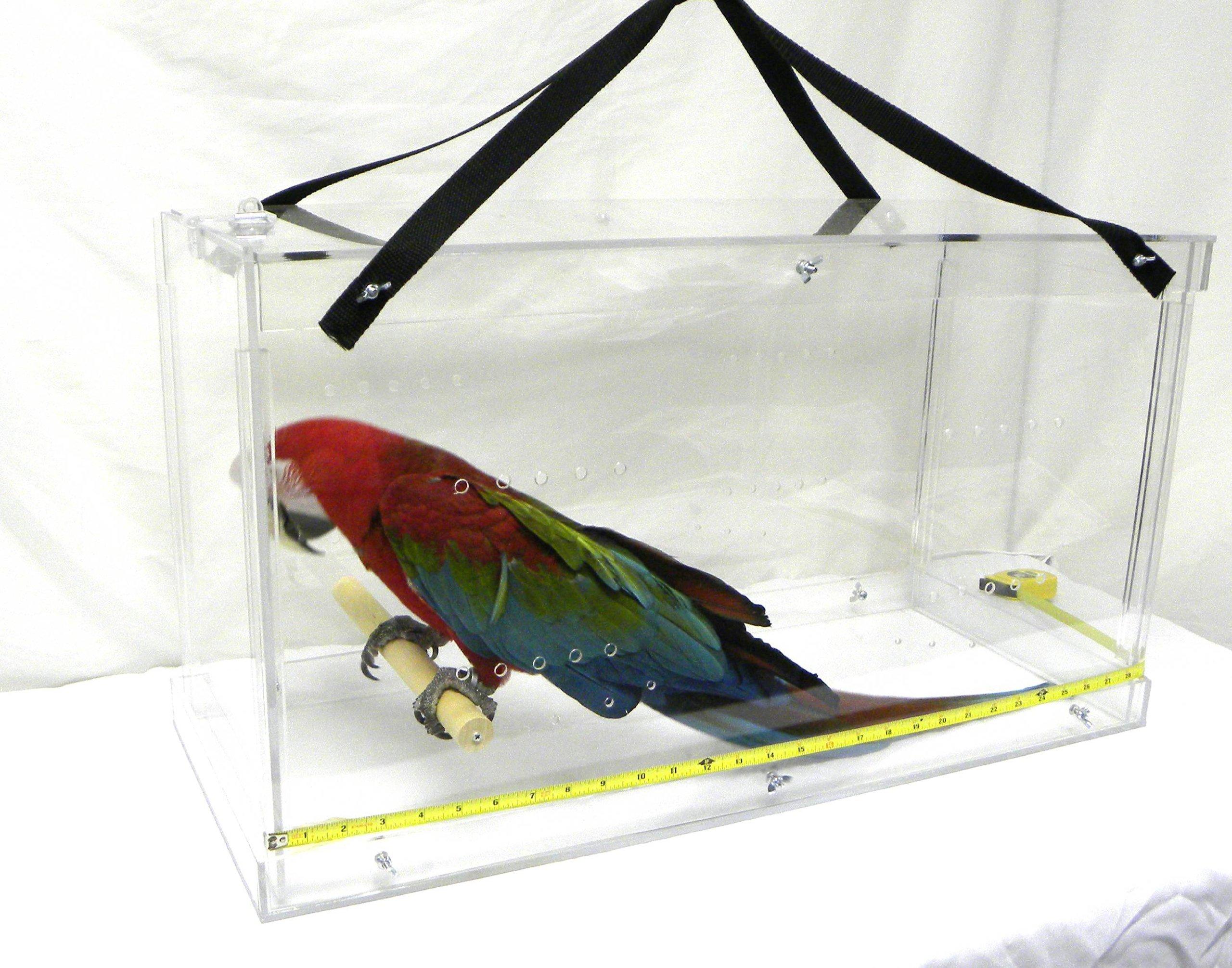 Pennzoni Display Acrylic Bird Carrier by Pennzoni Display