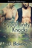 Opportunity Knocks (Laissez Faire Book 1)