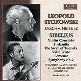 Sibelius: Violin Concerto/Finl