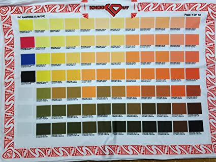 Amazon Closeout Pantone Color Guide Printed On Fabric