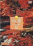 シンフォレストDVD 紅葉 名所絶景を訪ねて/映像遺産・ジャパントリビュート