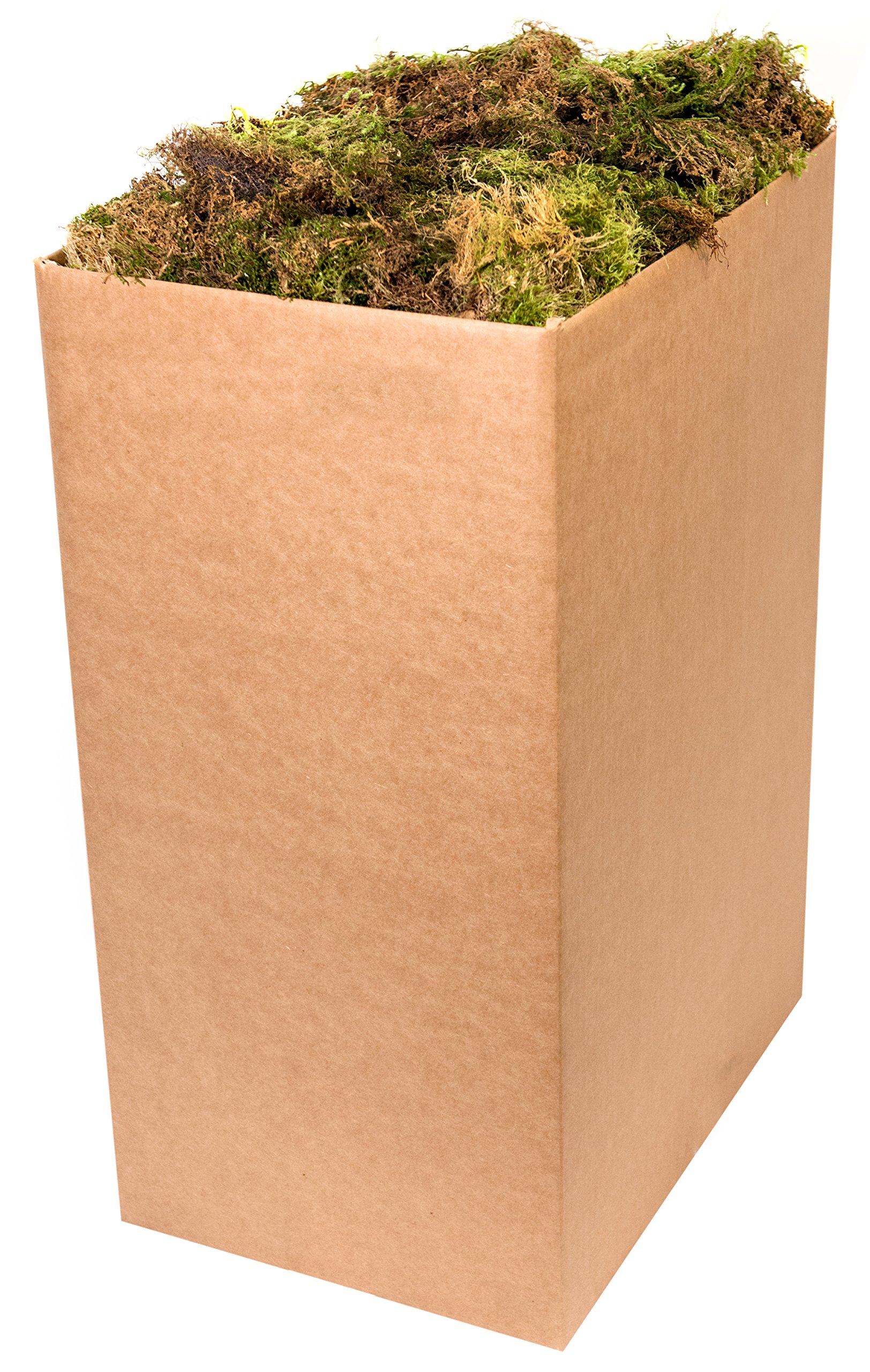 SuperMoss (21704) Forest Moss Dried, Natural, 10lbs