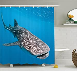 Ambesonne Sea Animals Decor Shower Curtain Set, Whale Shark Swimming Predators Hunter Clear Water Under The Sea Picture, Bathroom Accessories, 69W X 70L Inches, Blue Grey