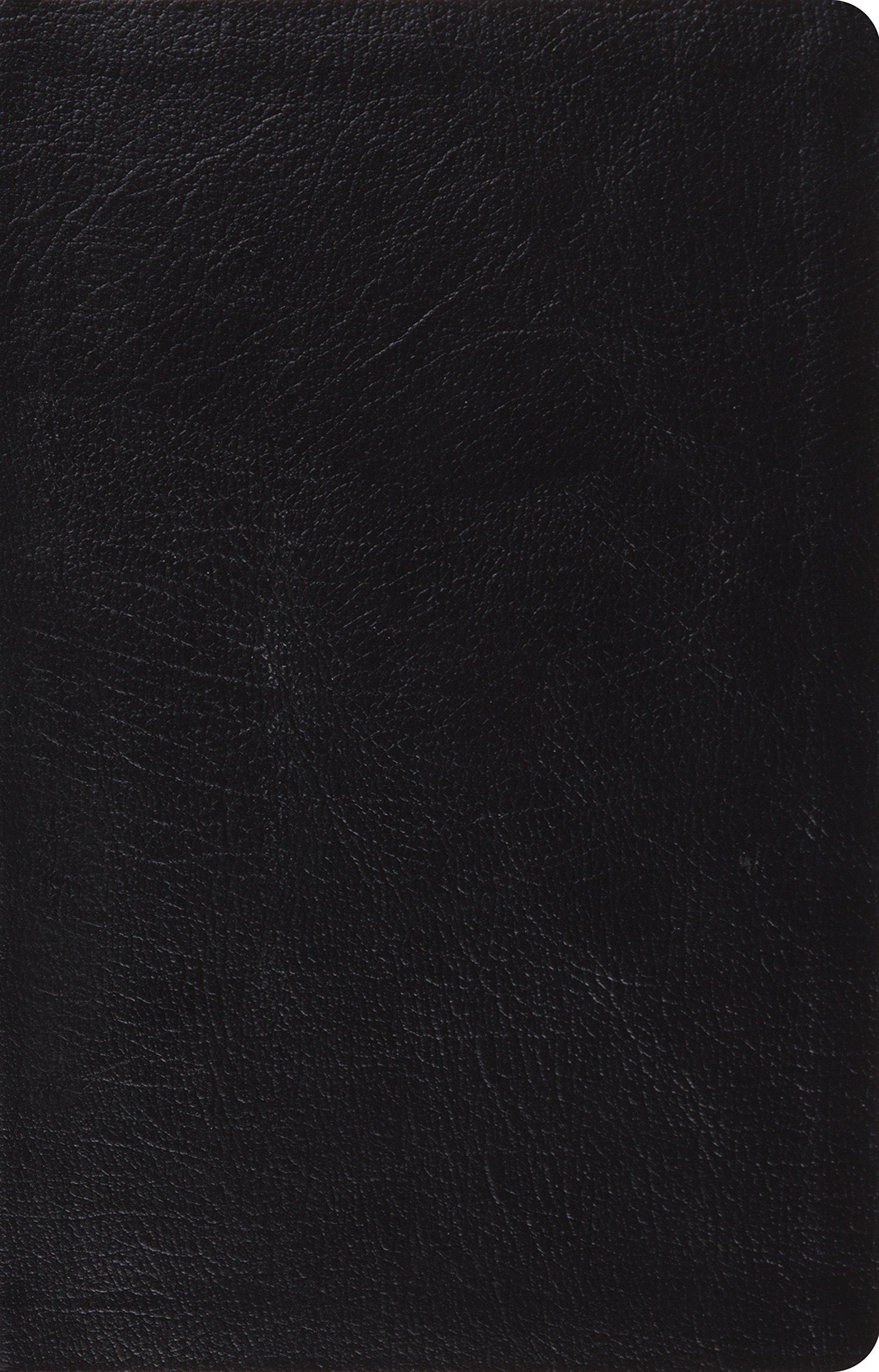 Download ESV Large Print Thinline Reference Bible (Black) PDF
