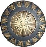 Wonder Woman Adult Shield