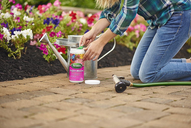 Amazon.com: Scotts – Fertilizante Super Bloom soluble en ...