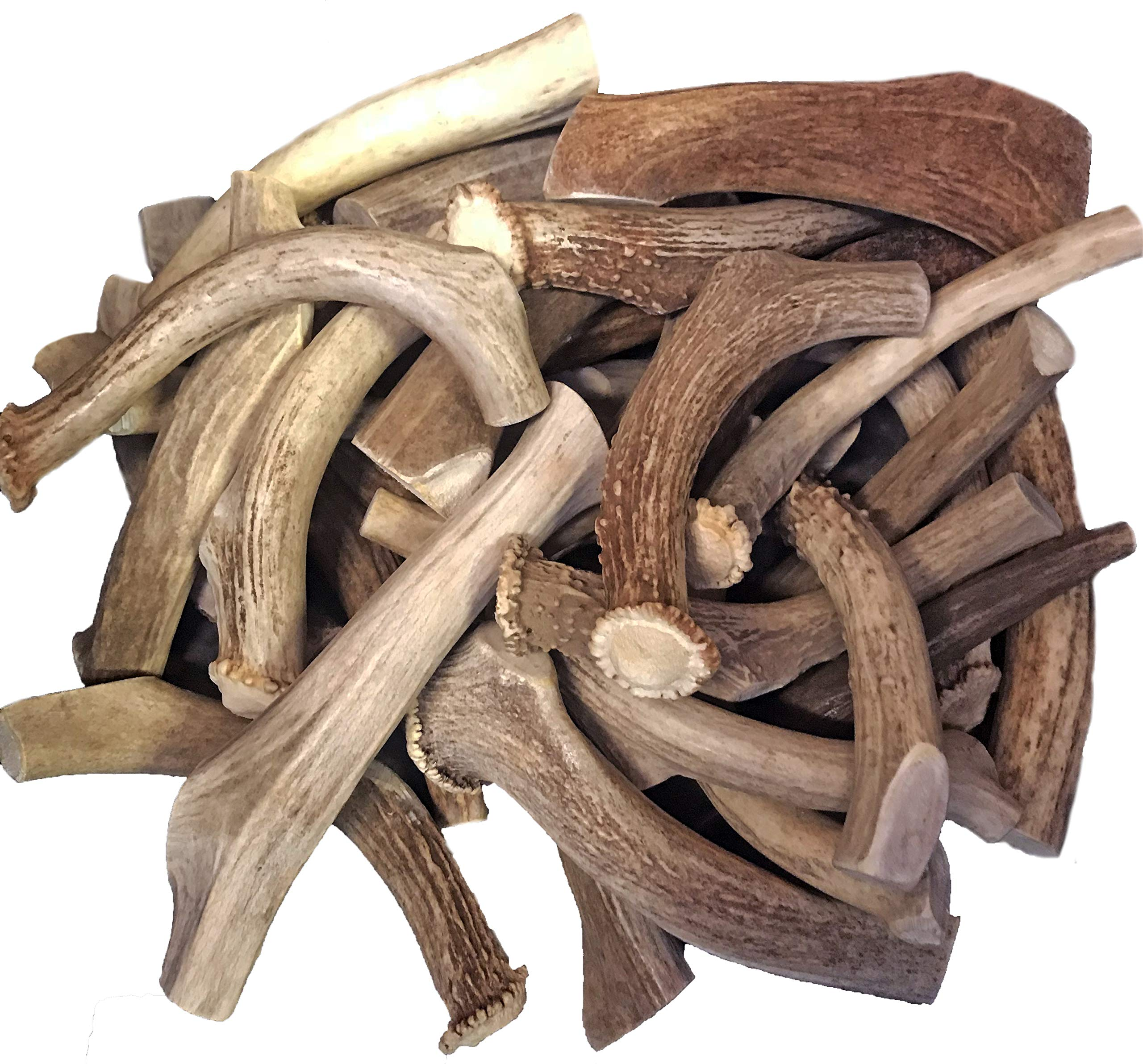 WhiteTail Naturals Premium Deer Antlers for Dogs (1 lb. Pack) All Natural Antler Chews | A Grade Organic Horn Dog Bone for Medium and Big Breeds | Power Chewer