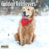 Golden Retriever 2018 16 Month Wall Calendar 12 x 12 inches