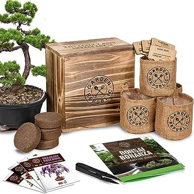 Bonsai Tree Seed Starter Kit - Mini Bonsai Plant Growing Kit, 4 Types of Seeds, Potting Soil, Pots, Pruning Shears Scissor Tool, Plant Markers, Wood Gift Box, Indoor Garden Gardening Gifts Idea : Garden & Outdoor
