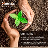 Himalaya Organic Licorice for Upset Stomach and