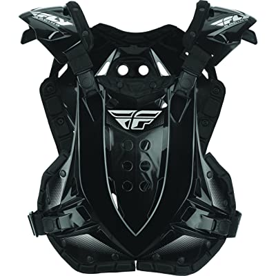 Fly Racing 2020 Stingray Roost Guard (Black): Automotive