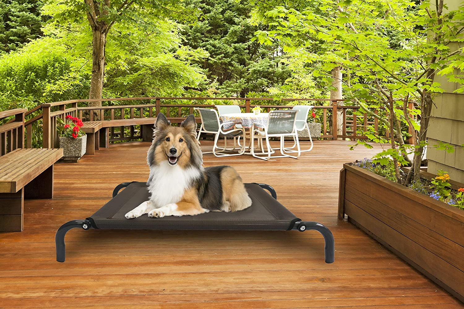 Renewed Reinforced Breathable Cooling Mesh Elevated Pet Cot Bed for Dogs /& Cats Available in Multiple Colors /& Sizes Furhaven Pet Dog Bed